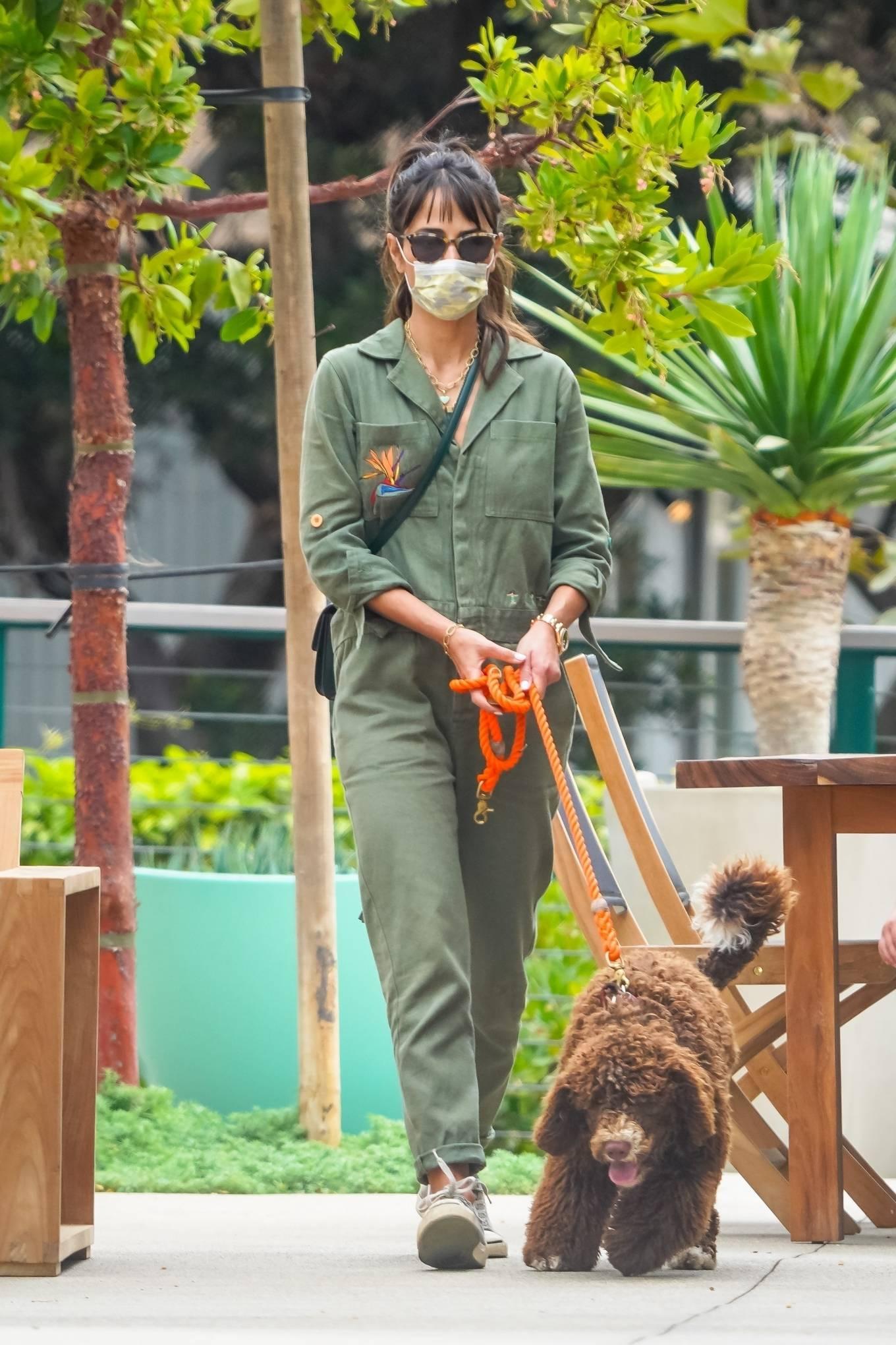 Jordana Brewster - Walk with her dog in Malibu
