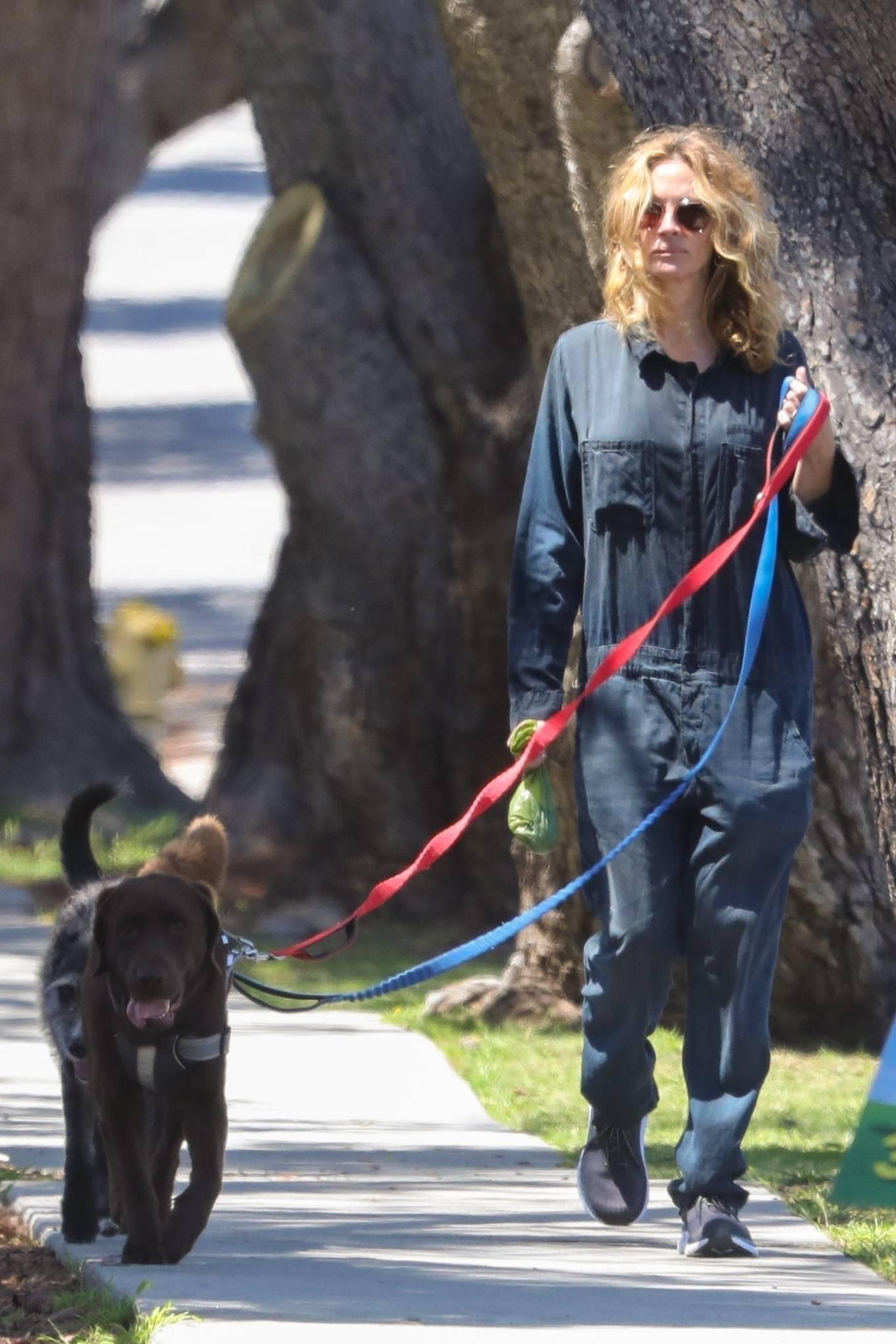 Julia Roberts - Seen walking her dogs