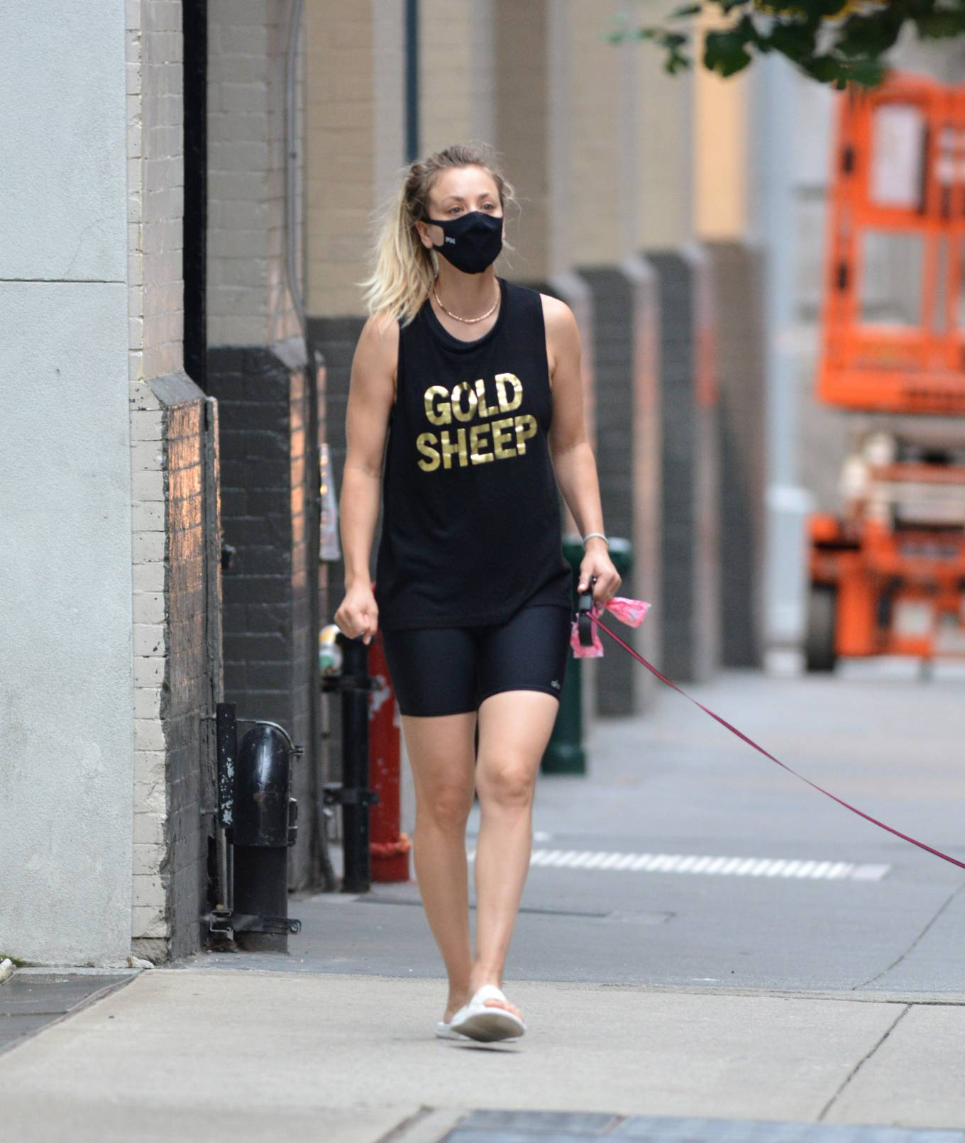 Kaley Cuoco 2020 : Kaley Cuoco – Seen Out in New York-09