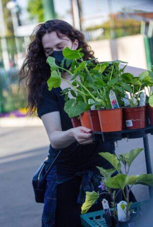 Kat Dennings - buy some plants in Studio City