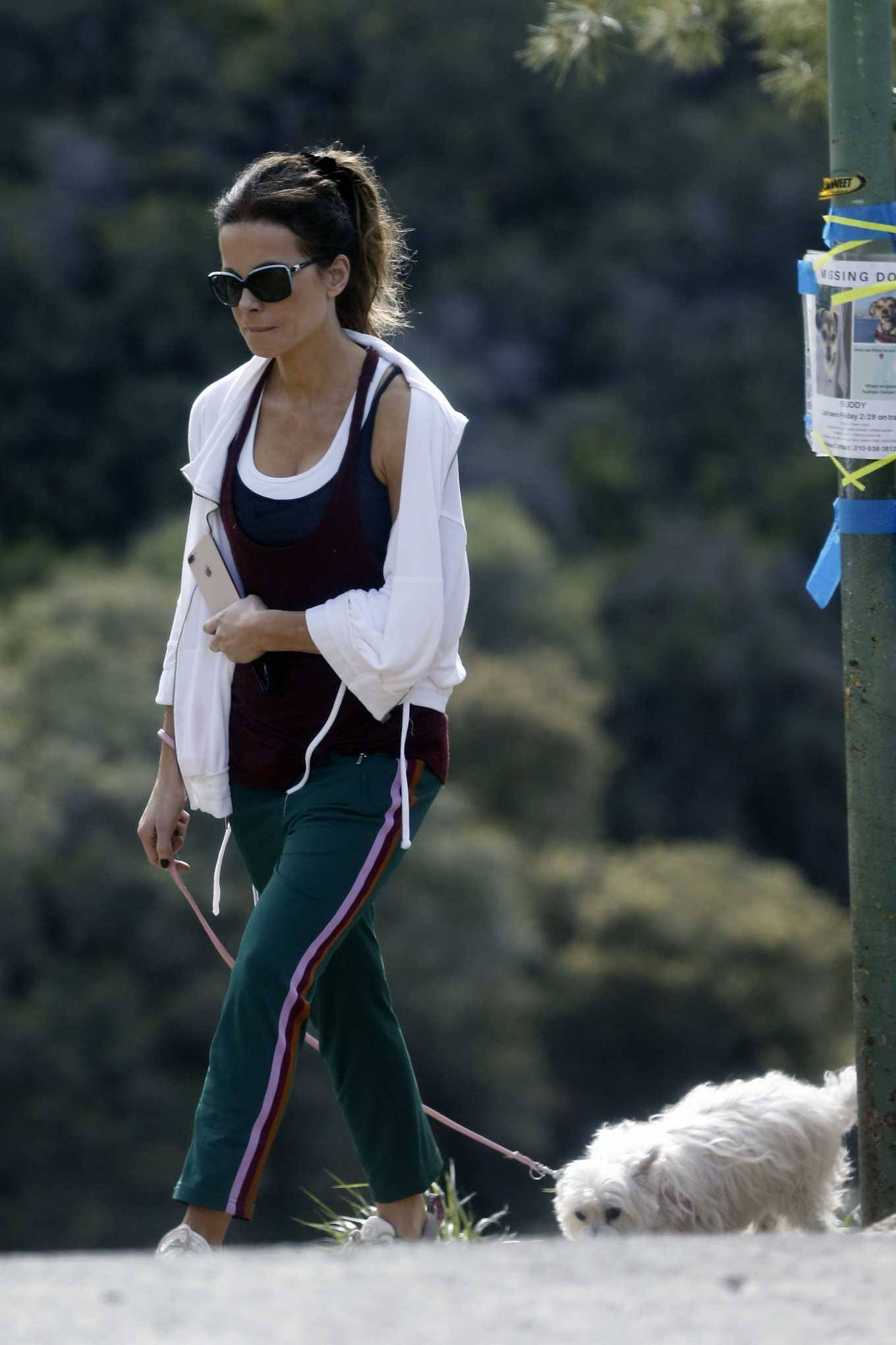 Kate Beckinsale takes her dog for a walkin Los Angeles