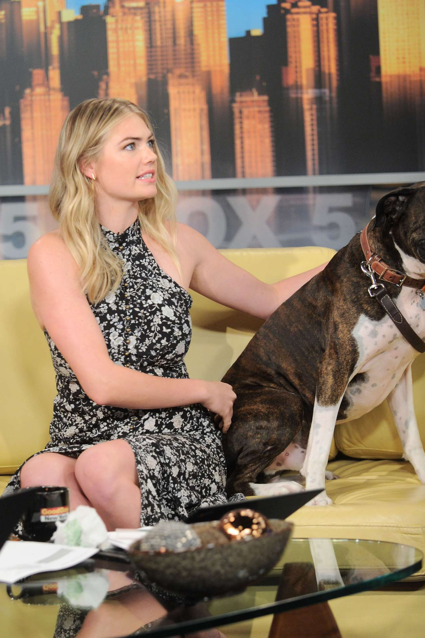 Kate Upton – 'Good Day New York' Morning Show in NY   Kate-Upton:-Good-Day-New-York-Morning-Show--08
