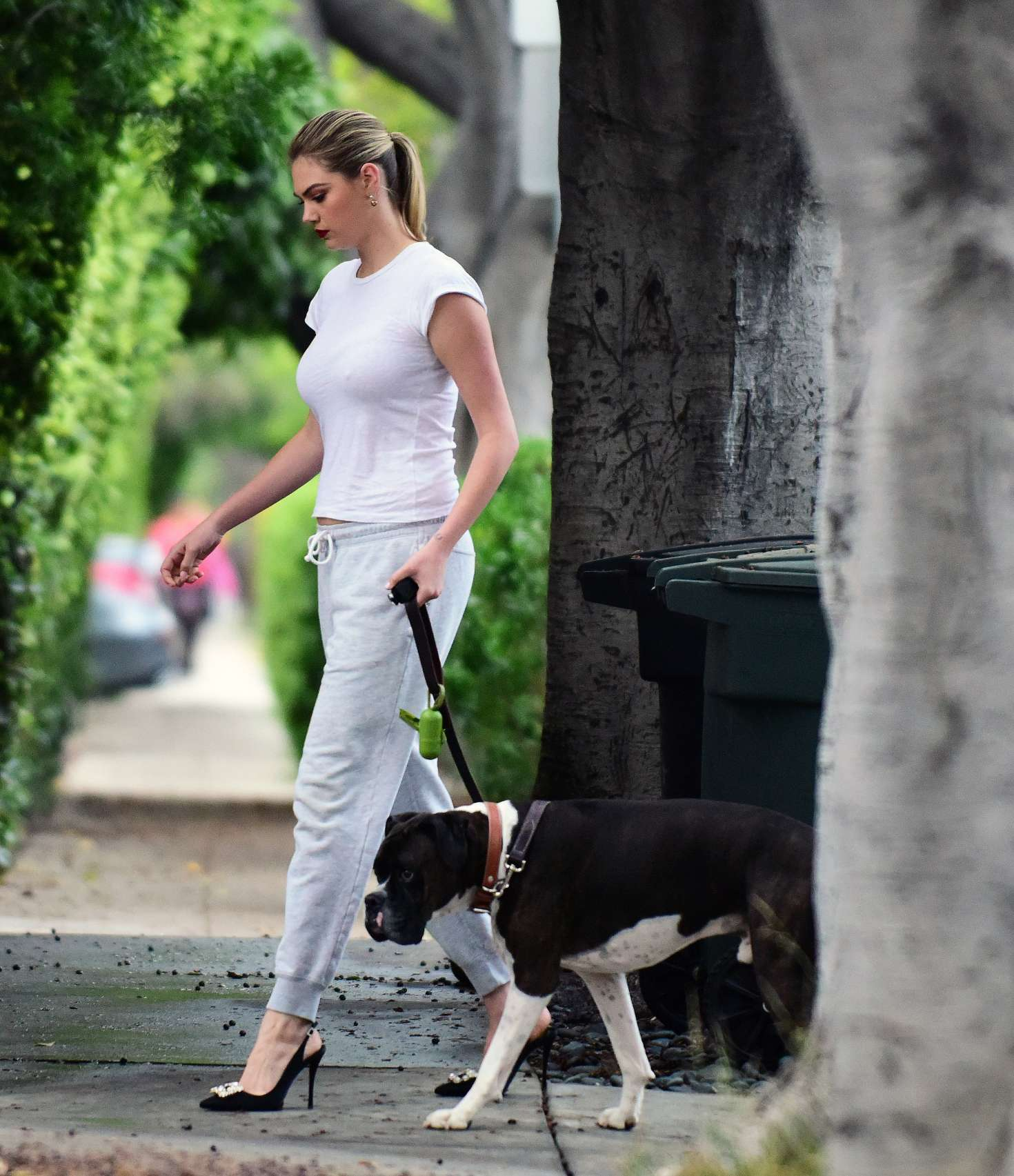 kate upton walking her dog in los angeles � gotceleb