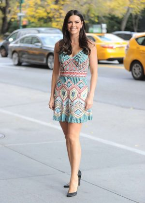 Katie Lee in Mini Dress out in New York