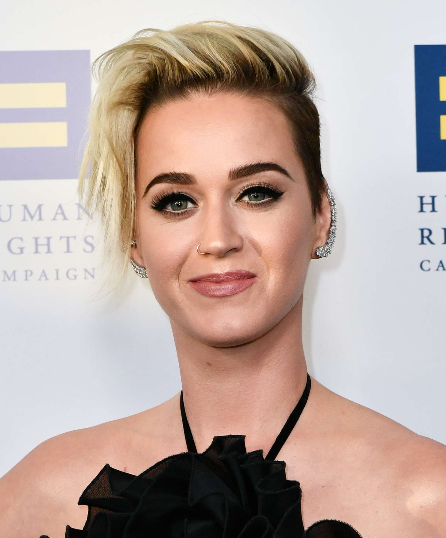 Katy Perry: Human Rights Campaign Gala Dinner 2017 -25 ... кэти перри 2017