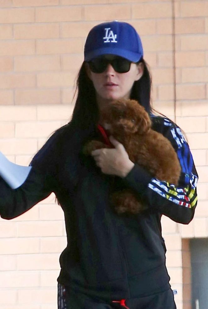Katy Perry - Leaving The Veterinarian's Office in LA