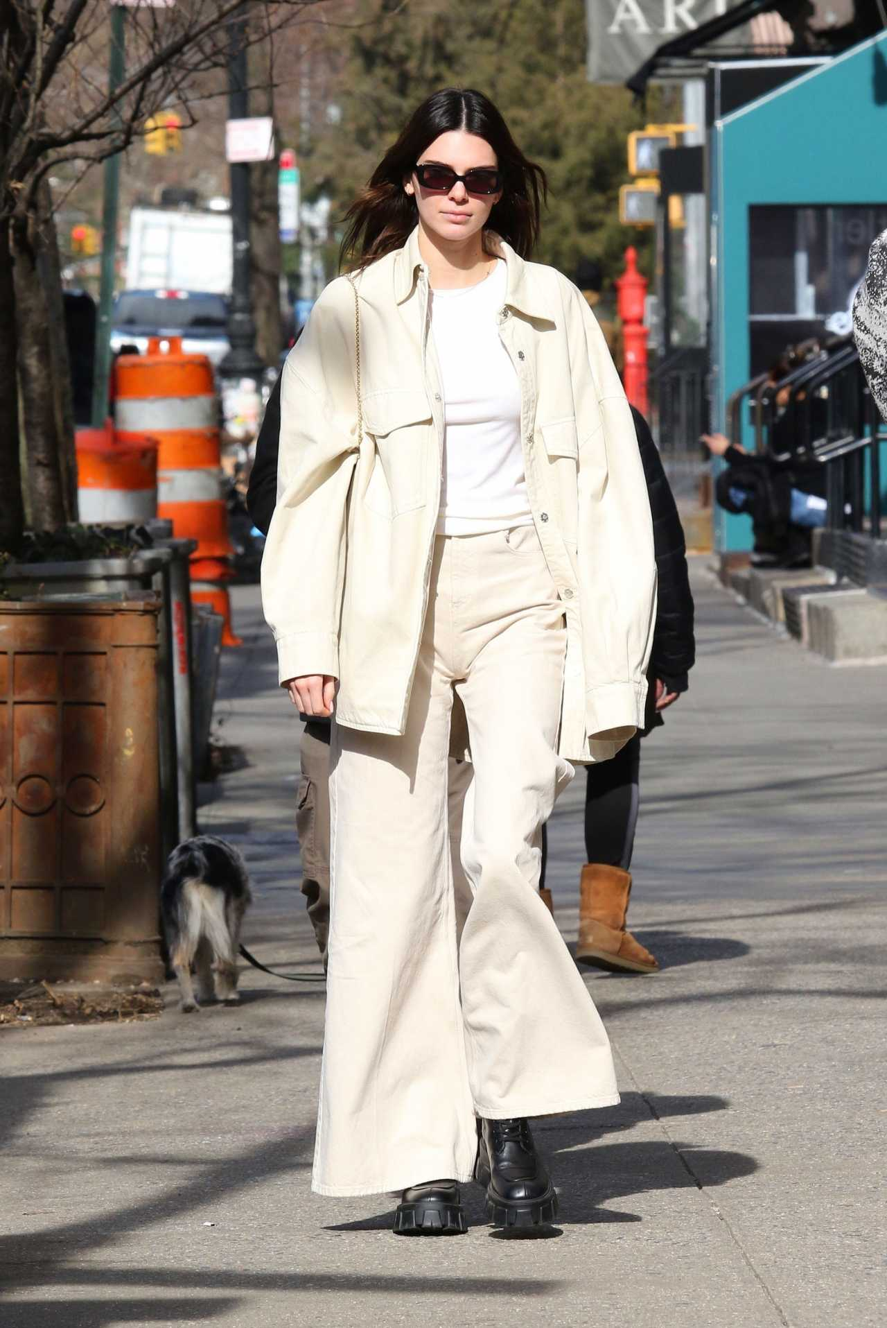 Kendall Jenner 2020 : Kendall Jenner – Goes for a walk with friends after lunch in New York-01
