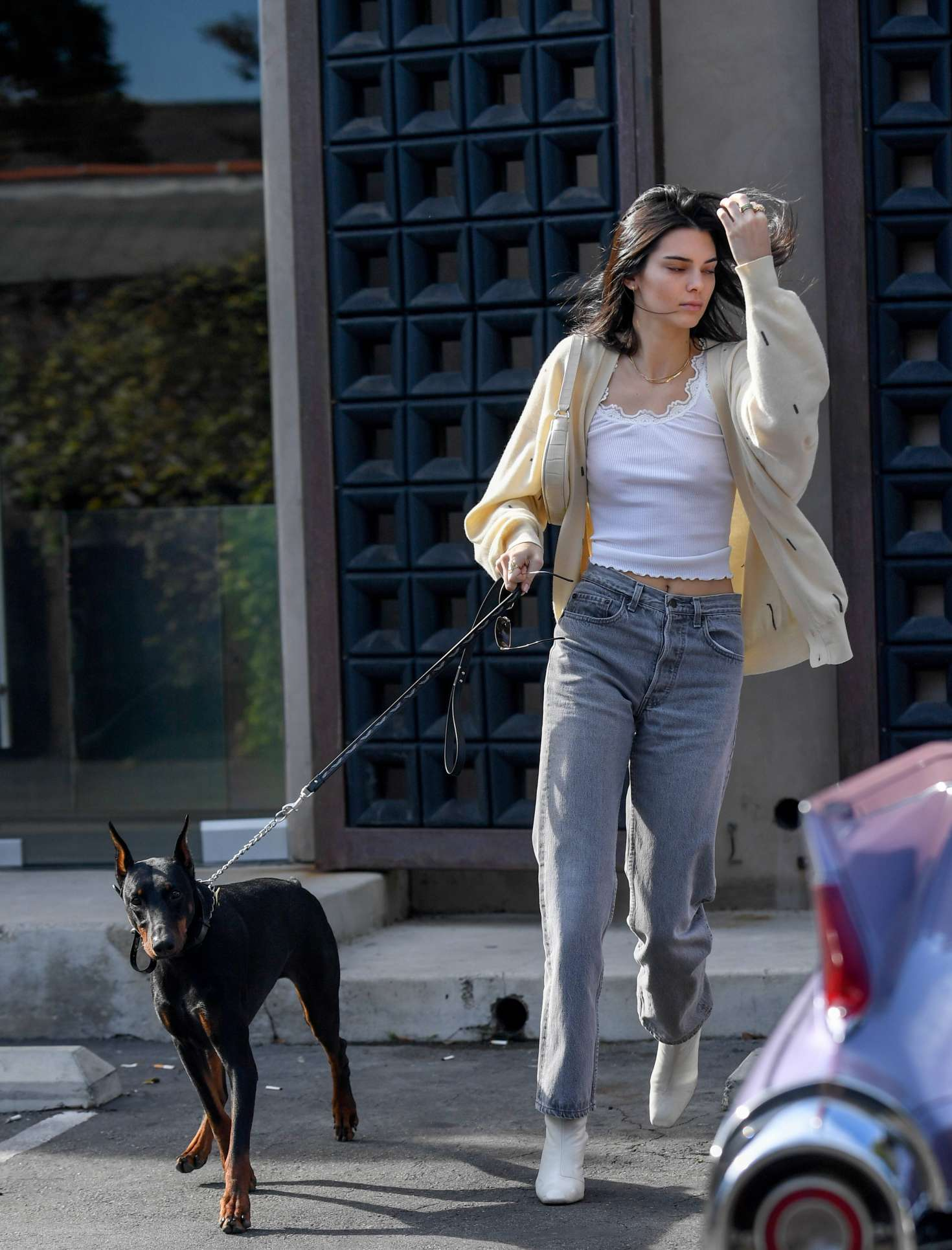 Kendall Jenner with her dog out for breakfast in LA