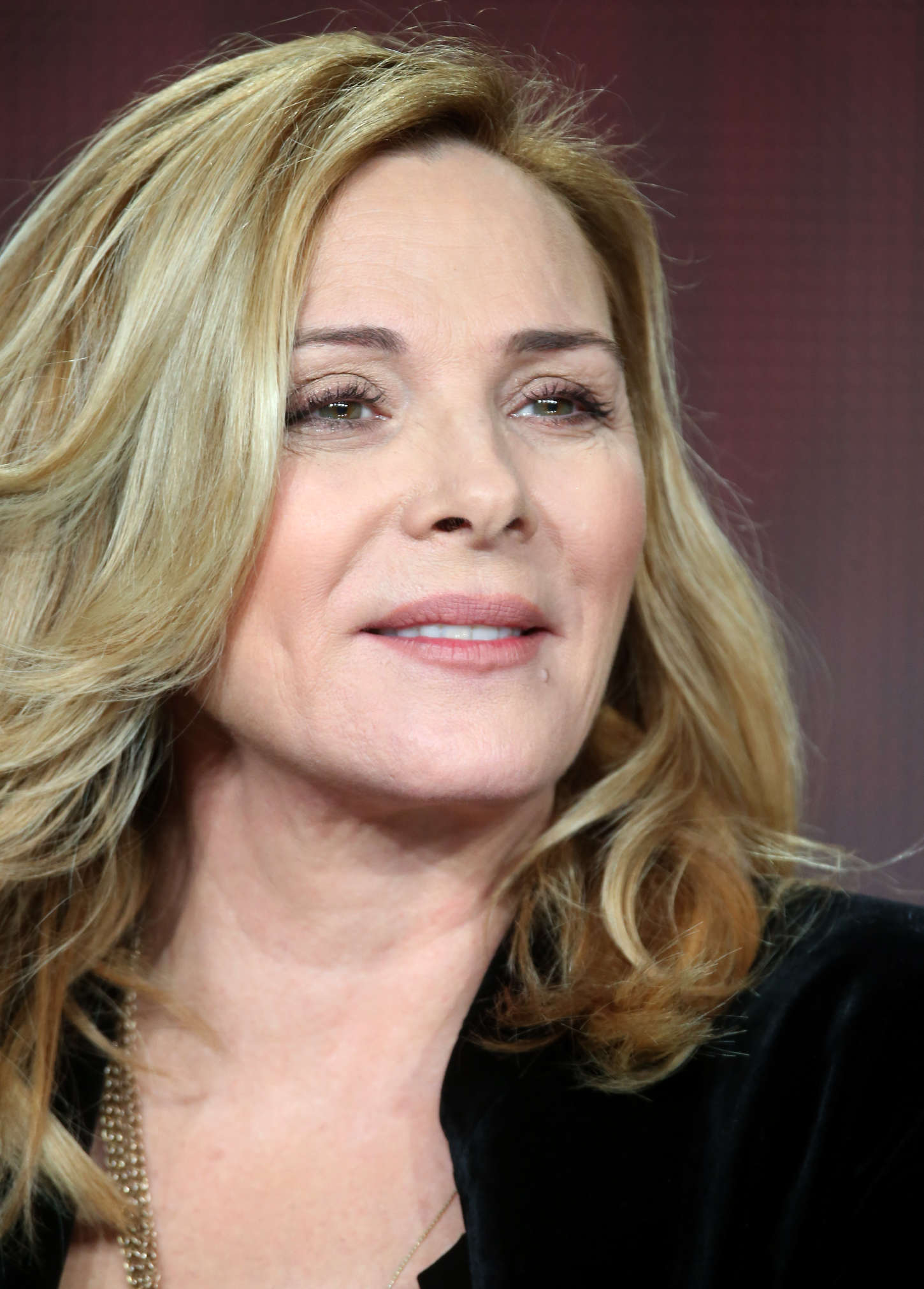 Kim Cattrall: Shakespeare Uncovered Panel at 2015 Winter TCA Tour -08 ... Kim Cattrall