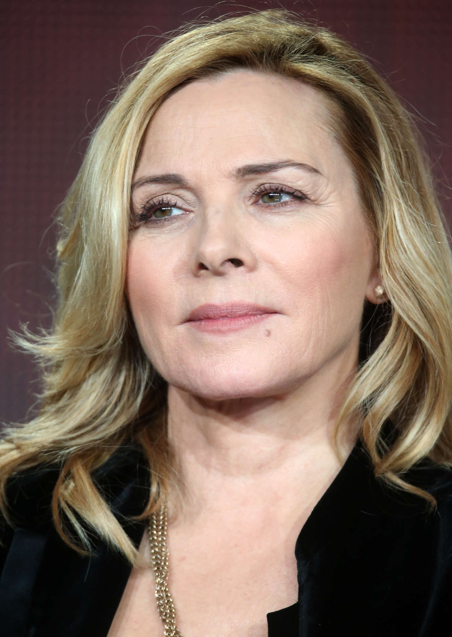 Kim Cattrall Shakespeare Uncovered Panel At 2015 Winter