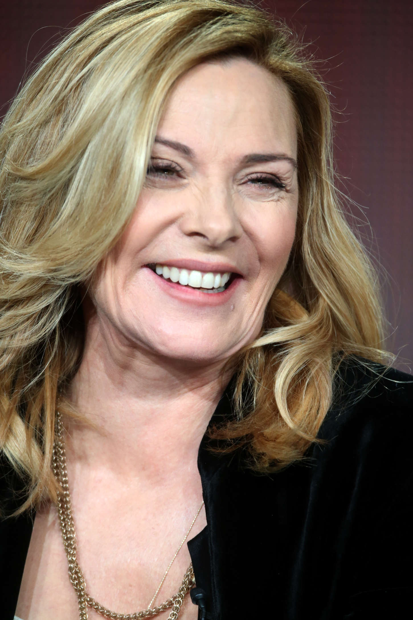 Kim Cattrall: Shakespeare Uncovered Panel at 2015 Winter TCA Tour -10 ...