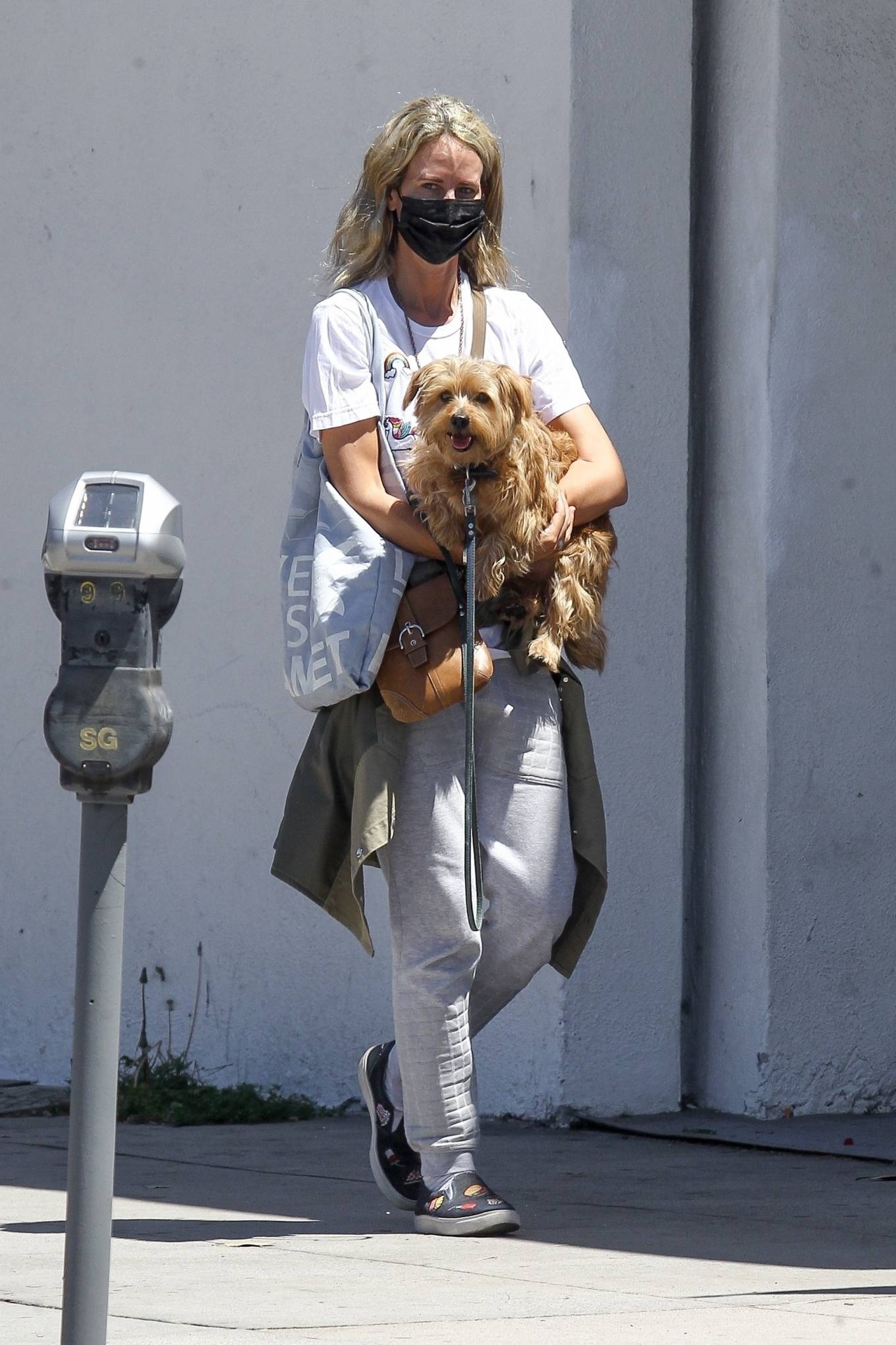 Lady Victoria Hervey 2020 : Lady Victoria Hervey – Out for a walk with her dog in West Hollywood-11