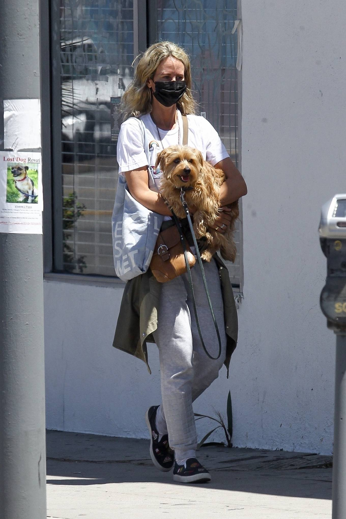 Lady Victoria Hervey 2020 : Lady Victoria Hervey – Out for a walk with her dog in West Hollywood-13