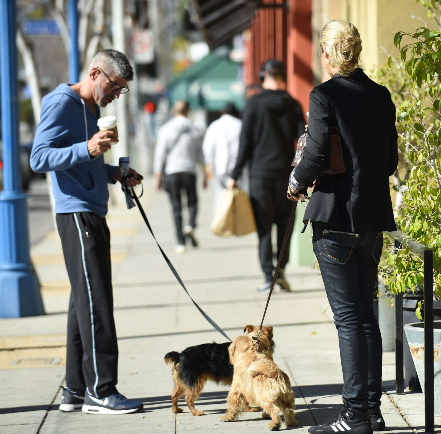 Lady Victoria Hervey 2016 : Lady Victoria Hervey Walking her dog -05