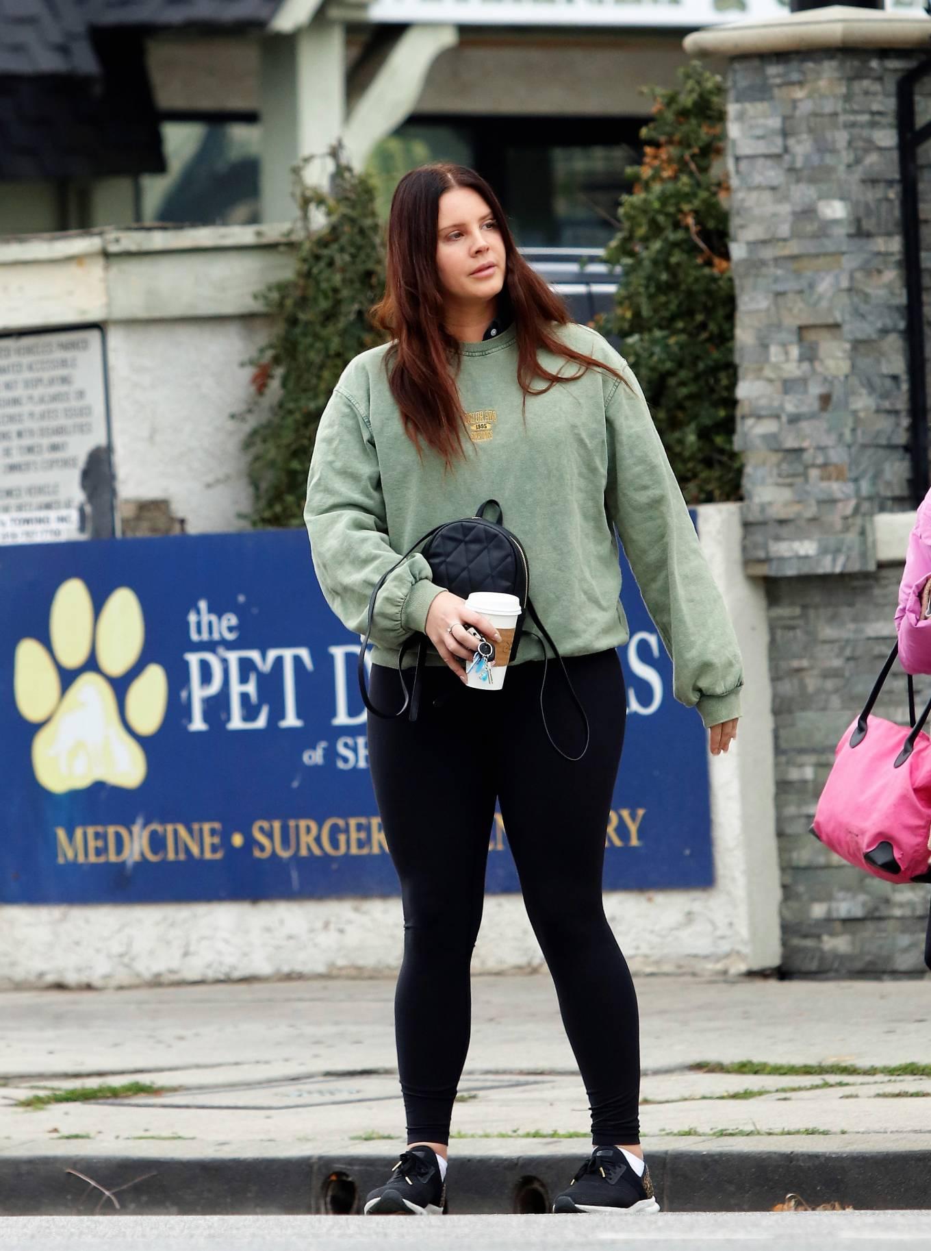 Lana Del Rey 2021 : Lana Del Rey – Seen with her mother in Los Angeles-11