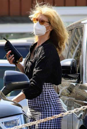 Laura Dern - Running errands in Brentwood