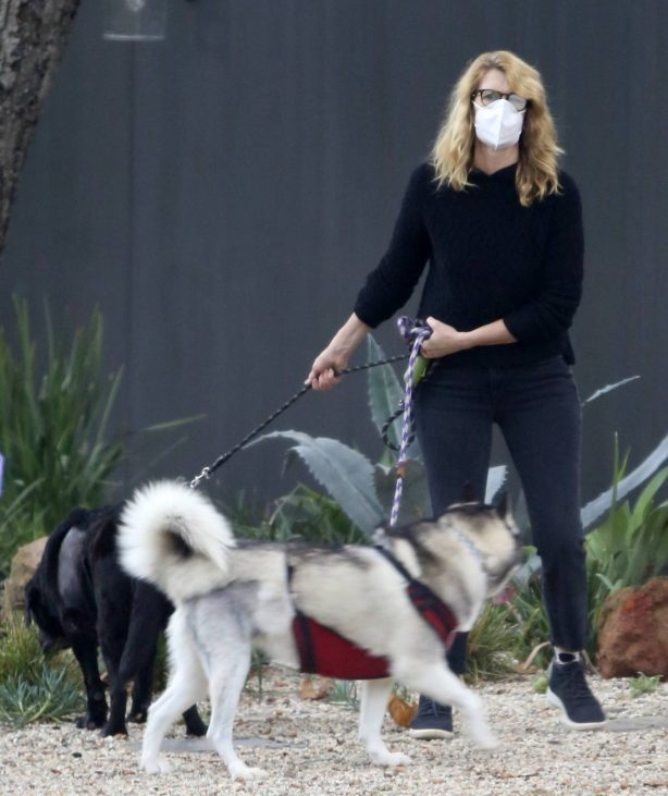 Laura Dern - Takes her dogs for a walk in Los Angeles