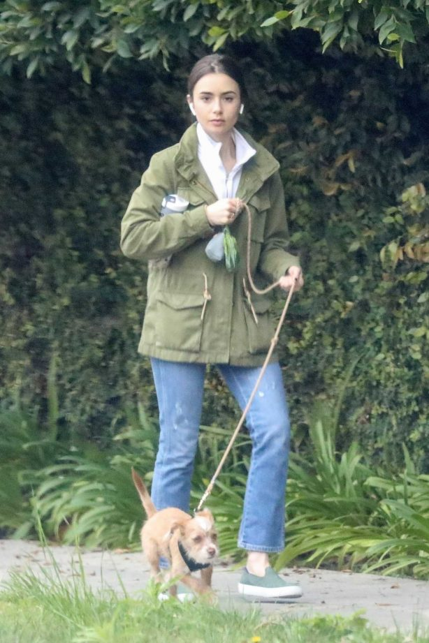 Lily Collins walk her dog in Beverly Hills