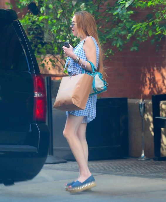 Lindsay Lohan - Arrives home at Long Island, New York City