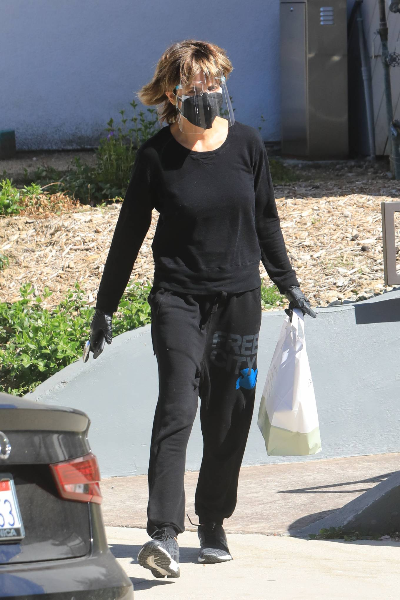 Lisa Rinna - Shopping in Beverly Hills