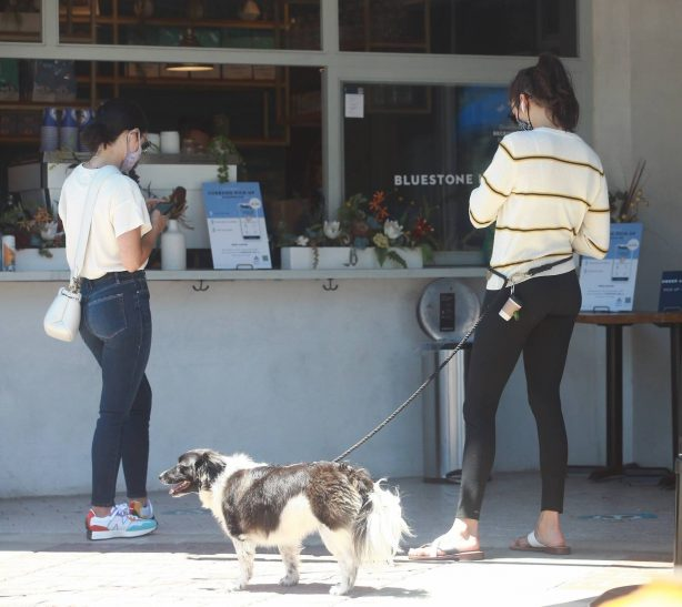 Lucy Hale and Nina Dobrev - Running errands in Los Angeles