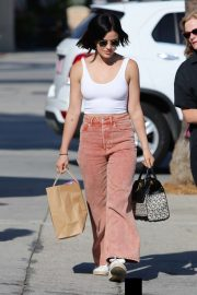 Lucy Hale - Out shopping in Los Angeles