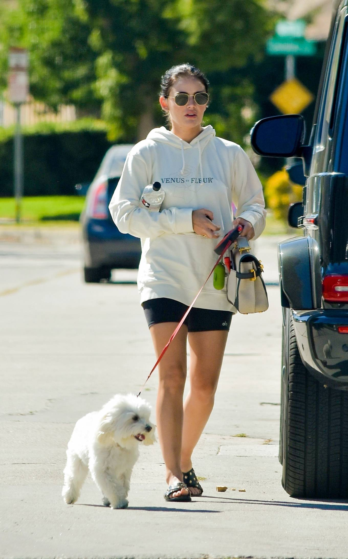 Lucy Hale - Out with her dog Elvis in Studio City - California