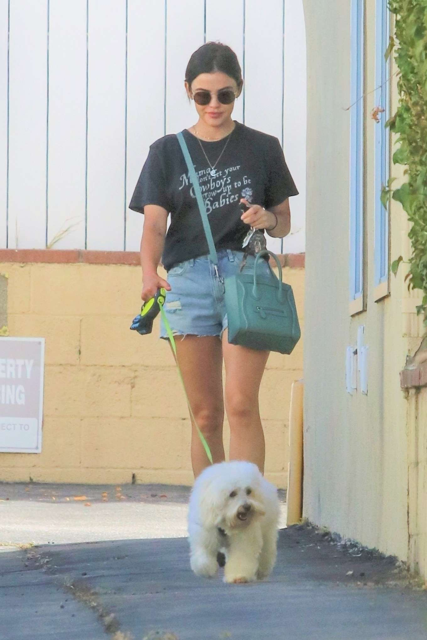 Lucy Hale - Picks up her dog Elvis from a dog hotel in Studio City