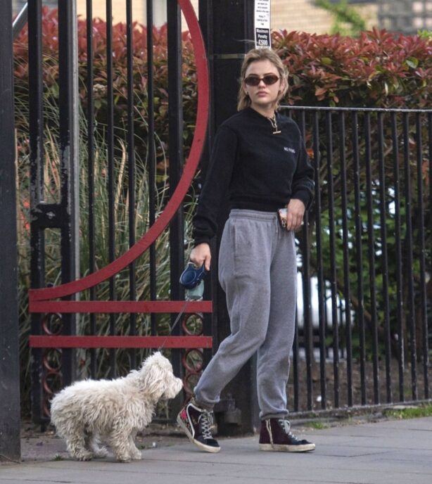 Lucy Hale - Steps out for a walk with her dog in London