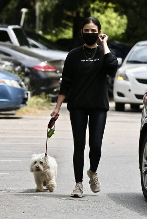 Lucy Hale - Walks her dog in Studio City