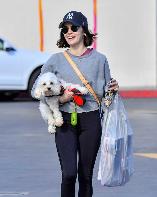 Lucy Hale with her dog out in Studio City