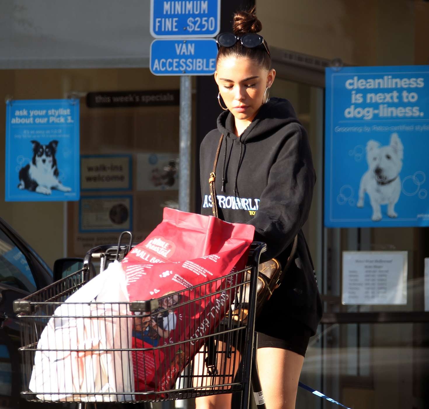 Madison Beer 2018 : Madison Beer with her dog -05