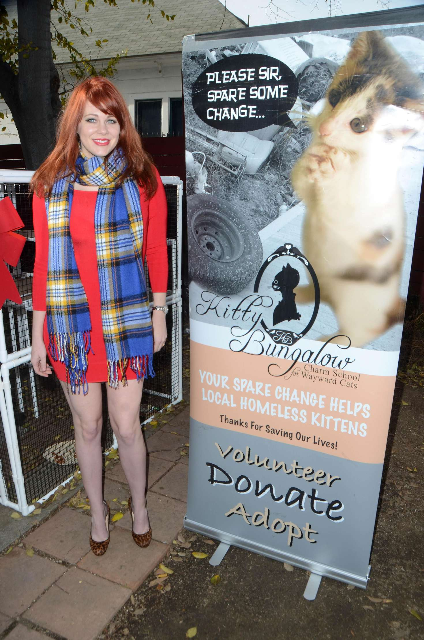 maitland ward kitty bungalow hosts holiday soup kitchen in los