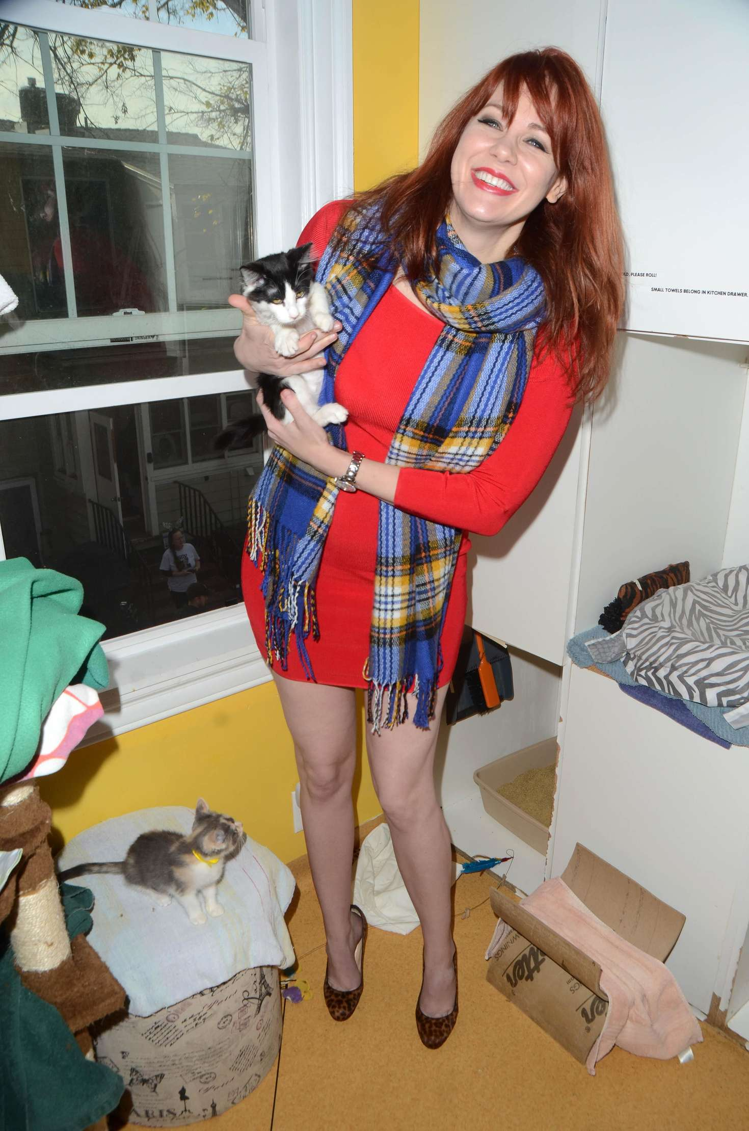 maitland ward kitty bungalow hosts holiday soup kitchen 15