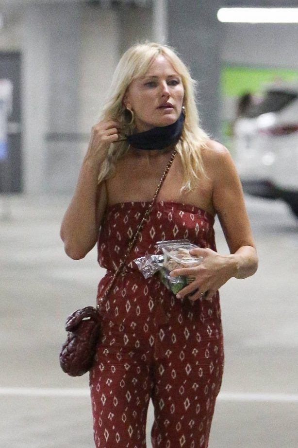 Malin Akerman - Goes grocery shopping in Los Angeles
