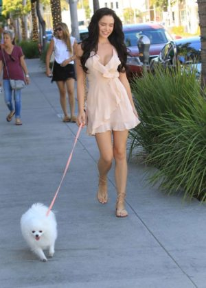Mara Teigen Out With Her Dog in Beverly Hills