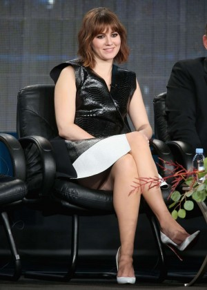 Mary Elizabeth Winstead  - 2015 Winter TCA -15