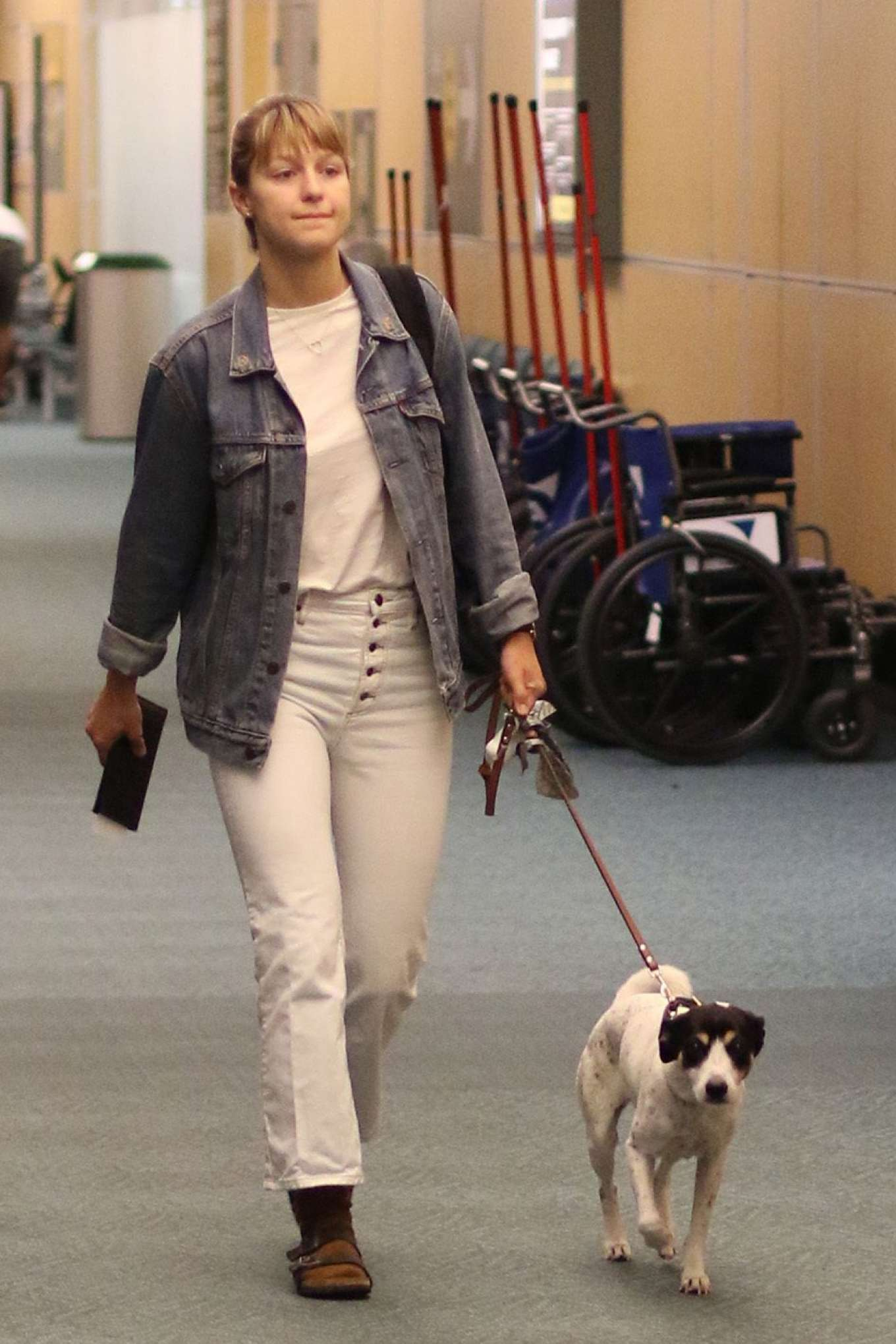 Melissa Benoist with her dog Farley at the airport in Vancouver