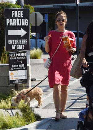 Minka Kelly in Red Dress with her dogs in Los Angeles