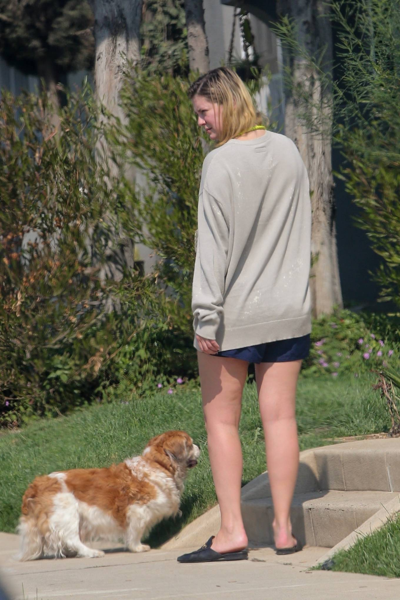 Mischa Barton - Out with her Cocker Spaniel for a walk in Los Angeles