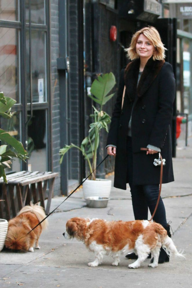 Mischa Barton - Walking her Dogs in Manhattan