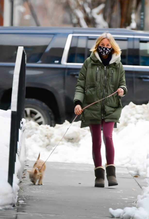 Naomi Watts - walking her dog in New York