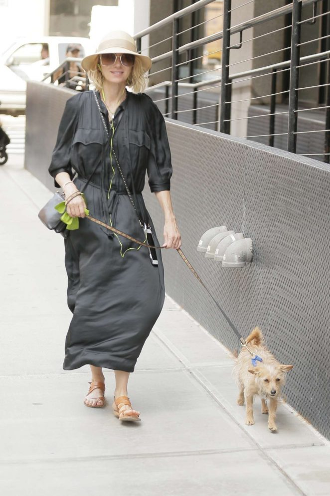 Naomi Watts with her dog out in New York