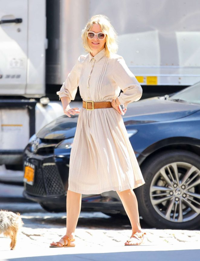 Naomi Watts with her puppy out in New York City