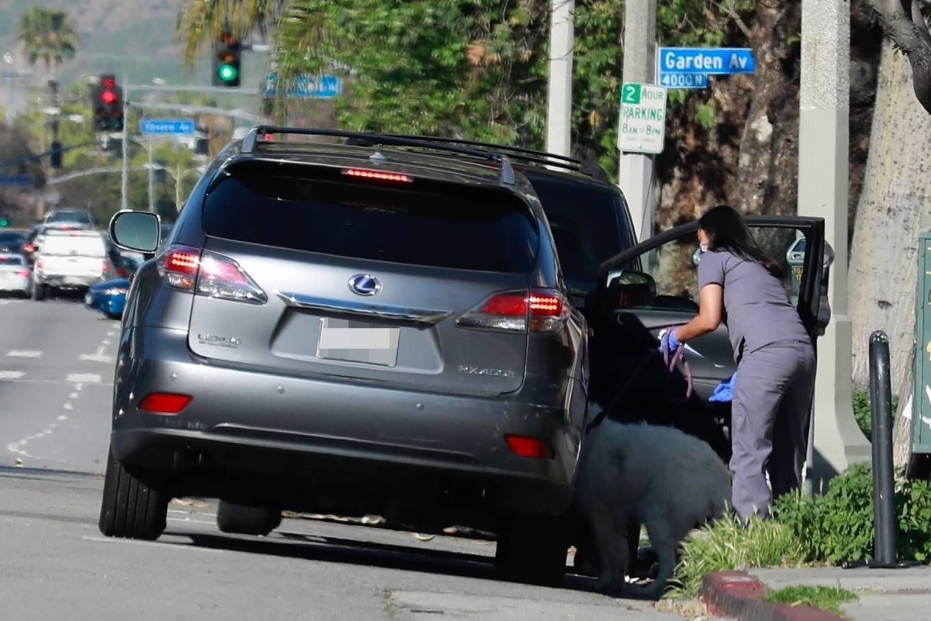Natalie Portman - Picked up her dog from the Animal Hospital in Los Feliz