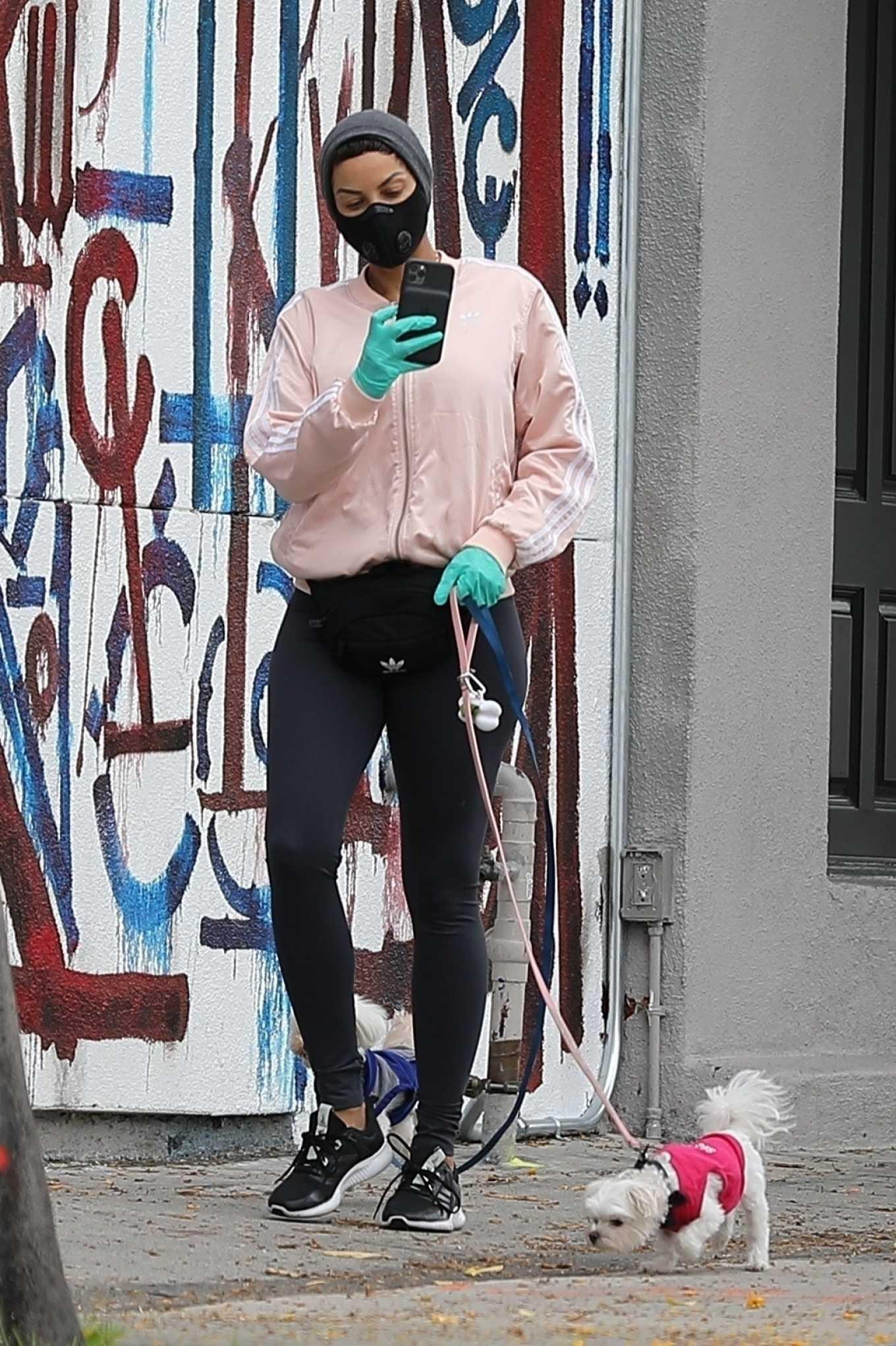 Nicole Murphy 2020 : Nicole Murphy – Takes her dog for a walk during Coronavirus lockdown in Beverly Hills-03