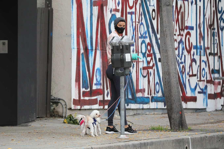 Nicole Murphy 2020 : Nicole Murphy – Takes her dog for a walk during Coronavirus lockdown in Beverly Hills-05