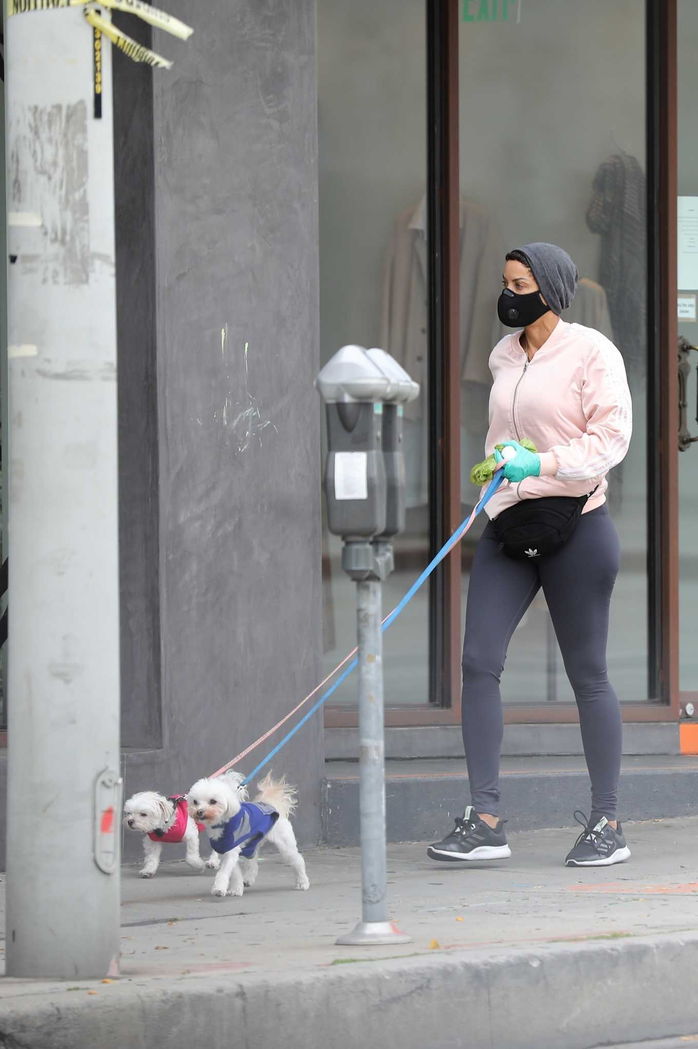 Nicole Murphy 2020 : Nicole Murphy – Takes her dog for a walk during Coronavirus lockdown in Beverly Hills-07