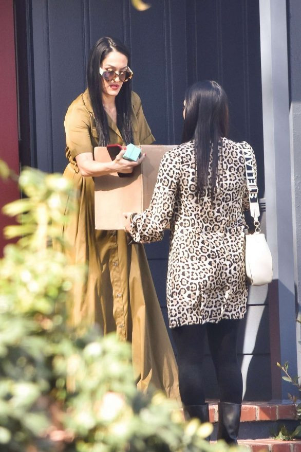 Nikki and Brie Bella - Out in Studio City