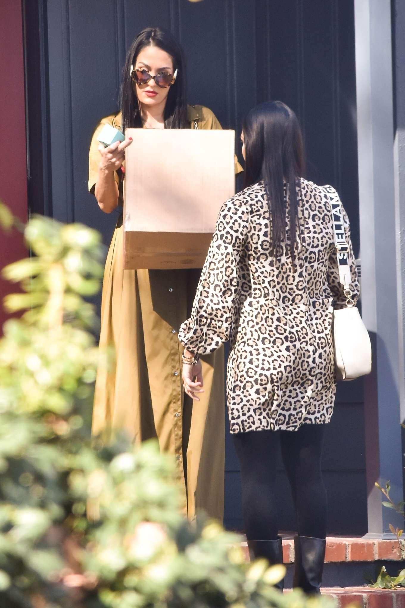 Brie Bella 2020 : Nikki and Brie Bella – Out in Studio City-11